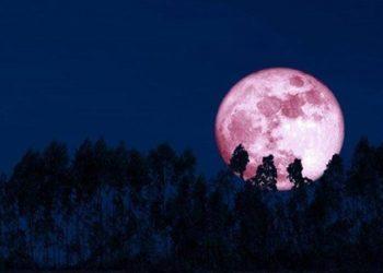 Memandang Indahnya Sang Penumbra, Gerhana Bulan Langka di Langit Palangka Raya
